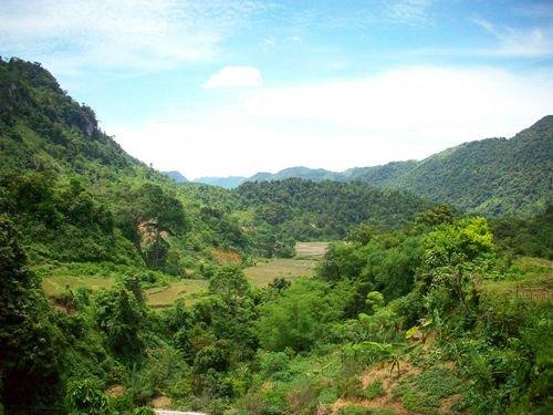 Khu bảo tồn thiên nhiên Ngọc Sơn – Ngổ Luông (Hòa Bình) là nơi có tình trạng chồng lấn nặng nhất trong các khu RĐD Việt Nam với diện tích chồng lấn lên đến 9927,5 ha. (Ảnh: thiennhien.net)