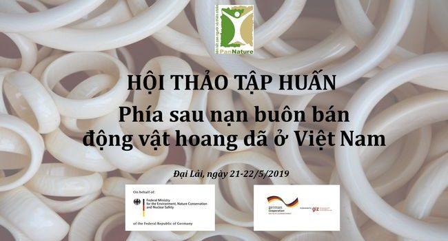 Phía Sau Nạn Buôn Bán động Vật Hoang Dã ở Việt Nam