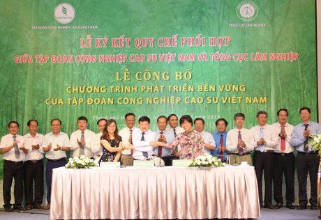 Cam Kết đồng Hành Cùng VRG Phát Triển Bền Vững