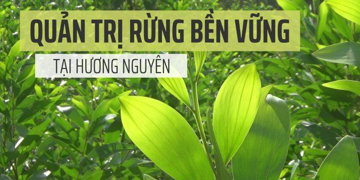 Video: Quản Trị Bền Vững Rừng Hương Nguyên