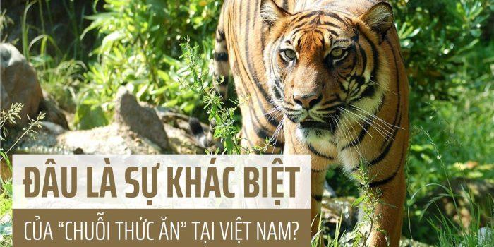 Video: Sự Khác Biệt Của Chuỗi Thức ăn Tại Việt Nam